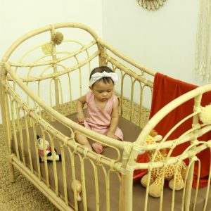 tips to choose baby bassinet